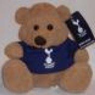 Spurs_Bear