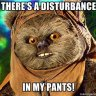 Dirty Ewok